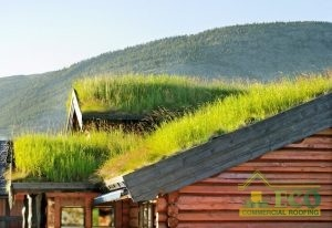 Green Roofing System in a Rural Setting